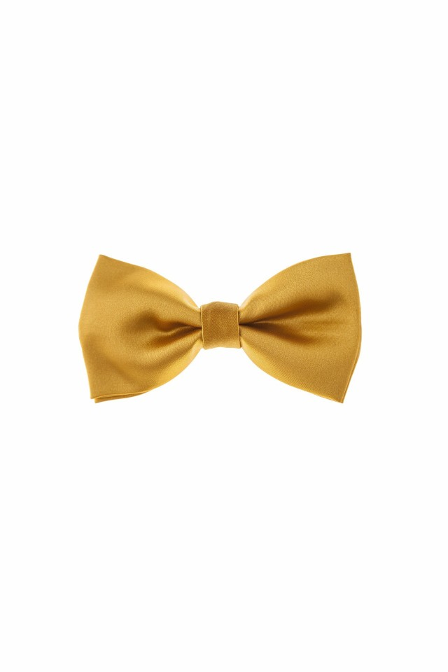 Ashiby bow tie