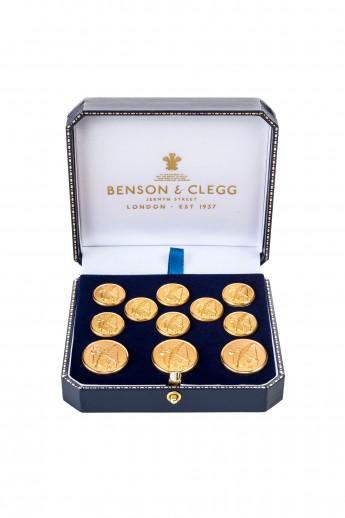 Cicero Buttons
